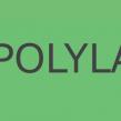 Criando Site WordPress em Vários Idiomas Com Polylang